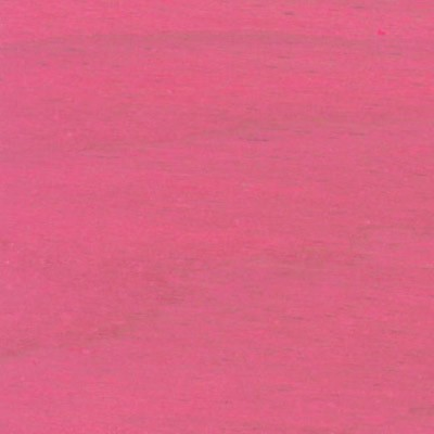 rosa - 28