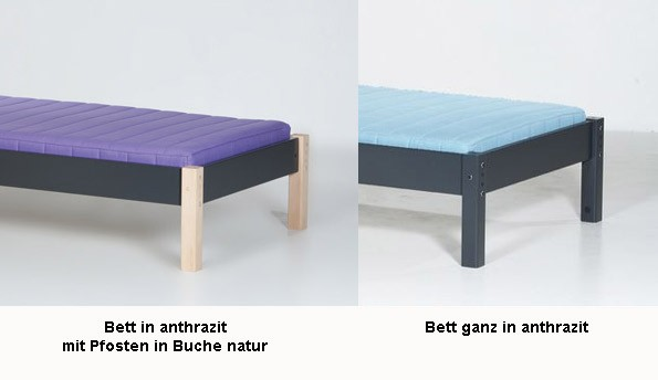 manis h hochbett ask im wallenfels onlineshop. Black Bedroom Furniture Sets. Home Design Ideas